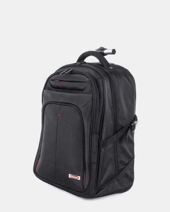 Purpose – Backpack on Wheels - Swiss Mobility
